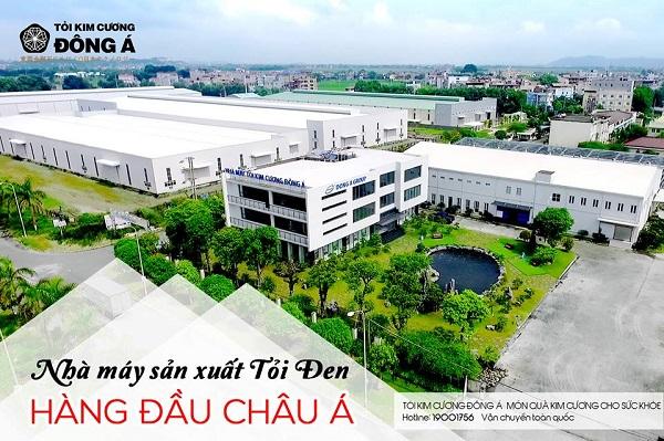 Nhà máy Tỏi Kim Cương Đông Á